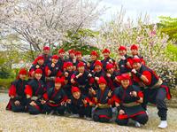 琉神Reds2019_02.jpgのサムネール画像