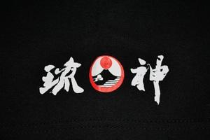 チカラ2013袖.jpg
